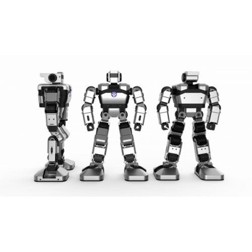 Robot YanShee